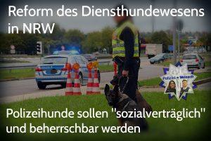 Reform des Diensthundewesens in NRW