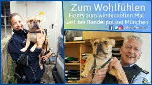 Zum Wohlfühlen: Henry zum wiederholten Mal Gast bei Bundespolizei München