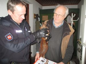 Streifenwagen wird zu Rettungstransporter für verletztes Eichhörnchen