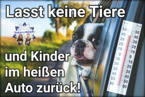Lasst bitte keine Tiere und Kinder im heißen Auto zurück!