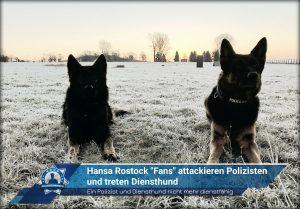 """Hansa Rostock """"Fans"""" attackieren Polizisten und treten Diensthund"""