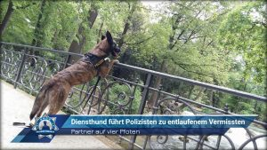 Diensthund führt Polizisten zu entlaufenem Vermissten