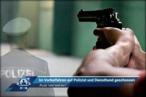 """Aus """"versehen"""": Im Vorbeifahren auf Polizist und Diensthund geschossen"""