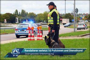 Zwangsweise Unterbringung: Randalierer verletzt zehn Polizisten und Diensthund