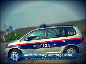 Vier Festnahmen, Polizistin verletzt: Mutter verteidigt straffällige Söhne