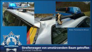 Sturmtief Friederike: Streifenwagen von umstürzendem Baum getroffen