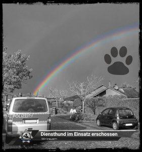 Wir trauern: Diensthund im Einsatz erschossen