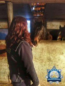 Im Einsatz für entlaufene Pferde