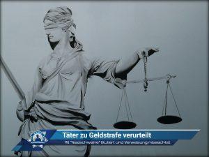 """Mit """"Nazischweine"""" tituliert und Verweisung missachtet: Täter zu Geldstrafe verurteilt"""