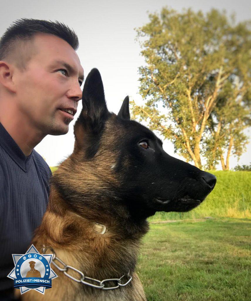 Tag des Hundes: Danke an alle vierbeinigen Kollegen und ihre Diensthundeführer/innen