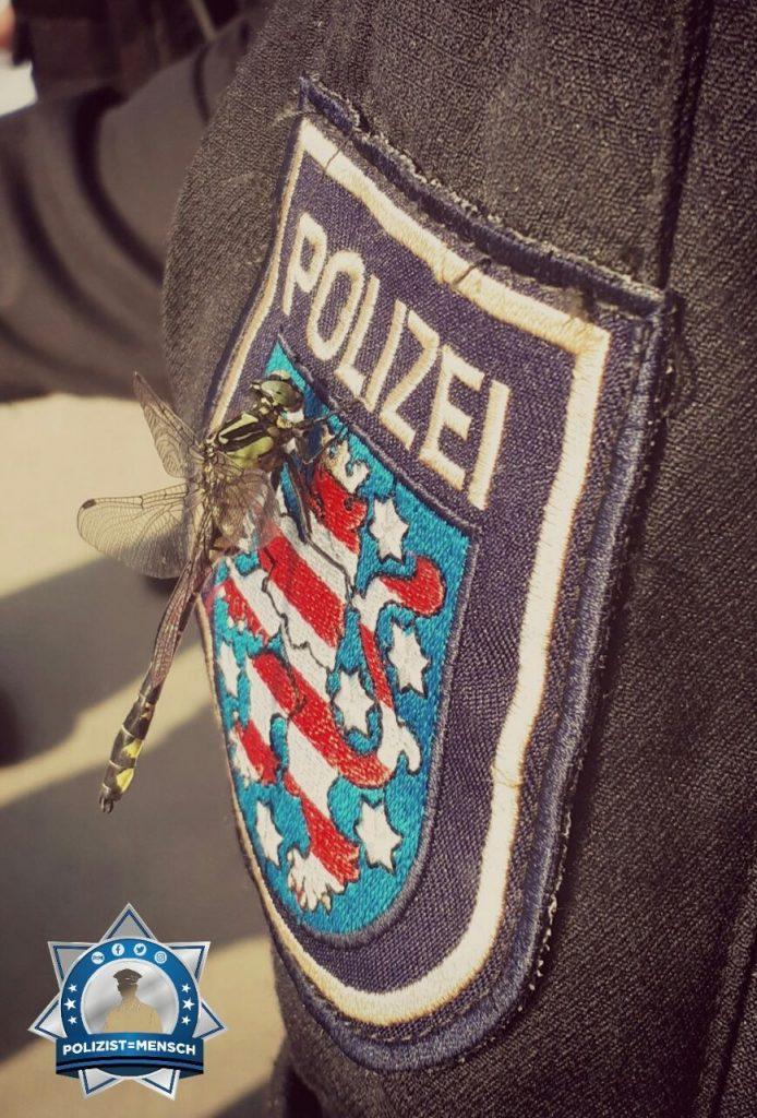 """""""Hi, mit den besten Grüßen aus Erfurt! Wir sind eben für alle da - auch für eine Libelle  Jerome"""""""