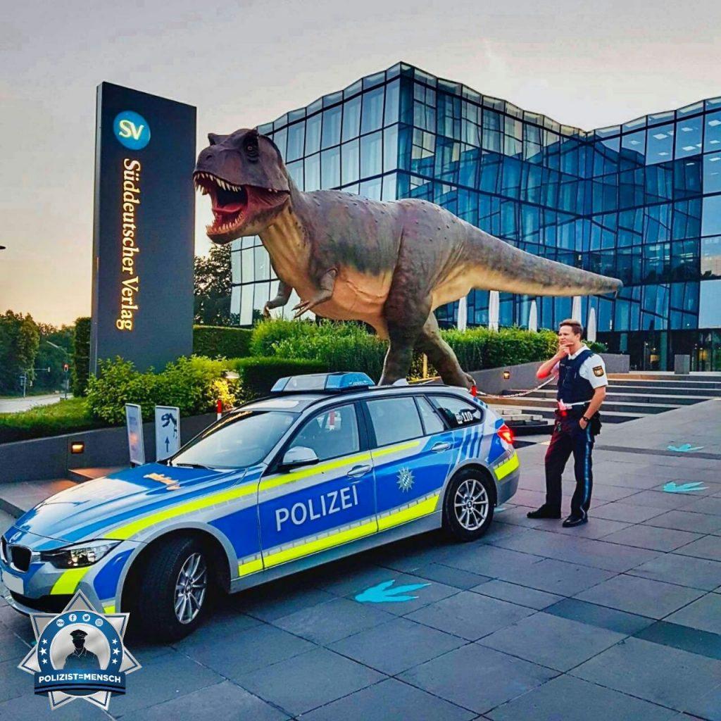 Wie bekommen wir den Fund-Dino nun in den Streifenwagen?