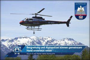 Sturz in 60 Meter tiefe Schlucht: Bergrettung und Alpinpolizei können gemeinsam Hund unverletzt retten