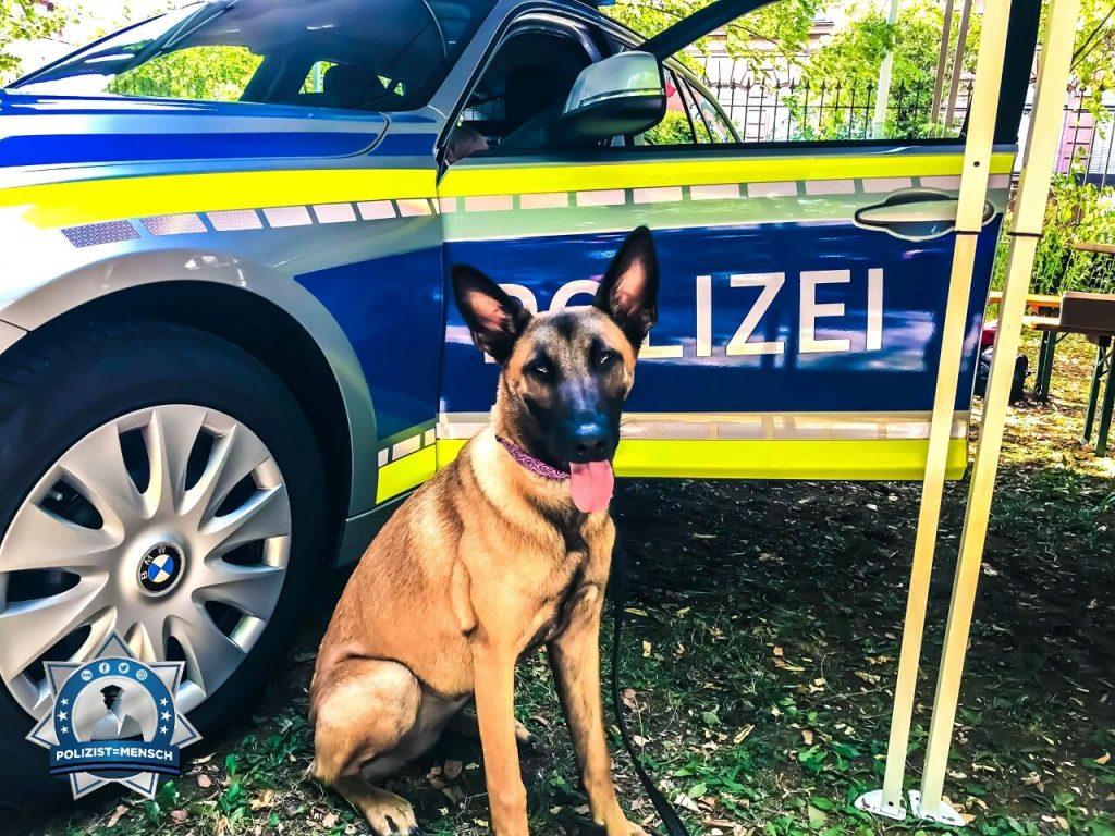 Gruß vom Rauschgiftspürhund der JVA Nürnberg