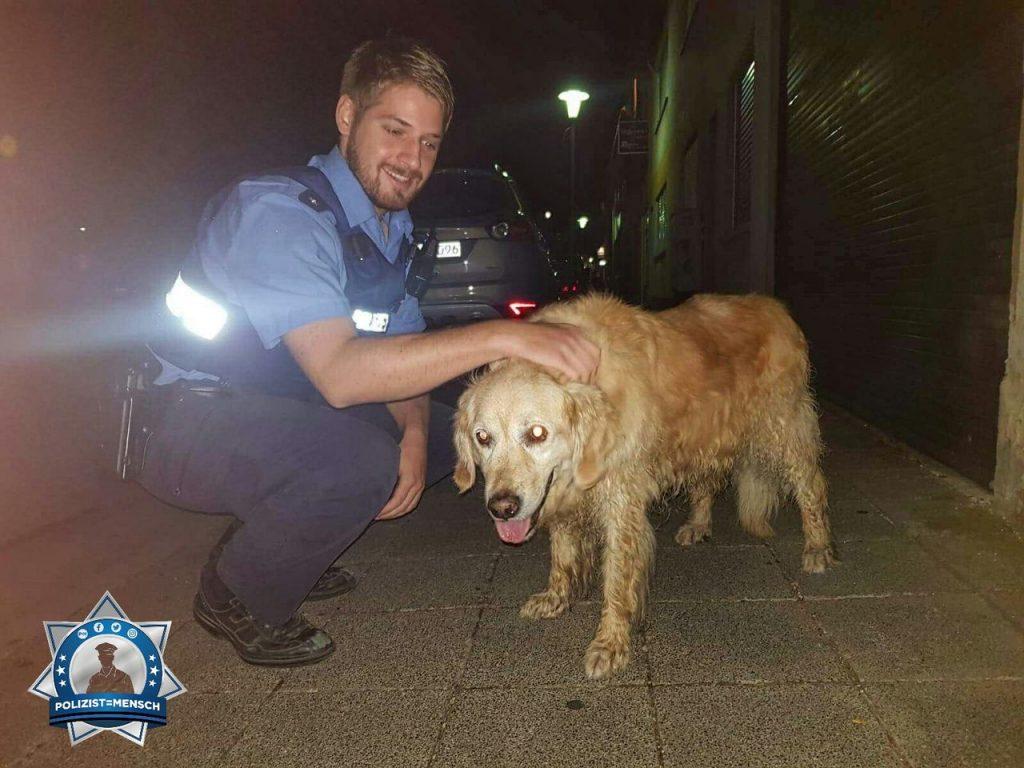 Polizist als Hundesitter