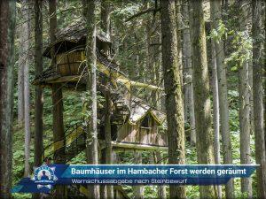 Warnschussabgabe nach Steinbewurf: Baumhäuser im Hambacher Forst werden geräumt