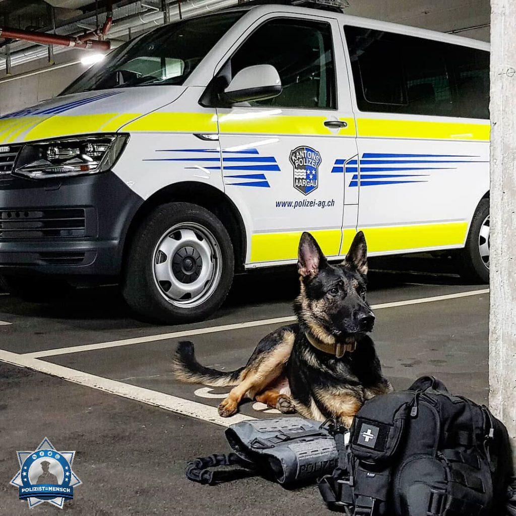 """""""Die Arbeit für heute ist getan, morgen geht's weiter. Liebe Grüße von Tasco, Diensthund der Kantonspolizei Aargau (Schweiz)!"""""""