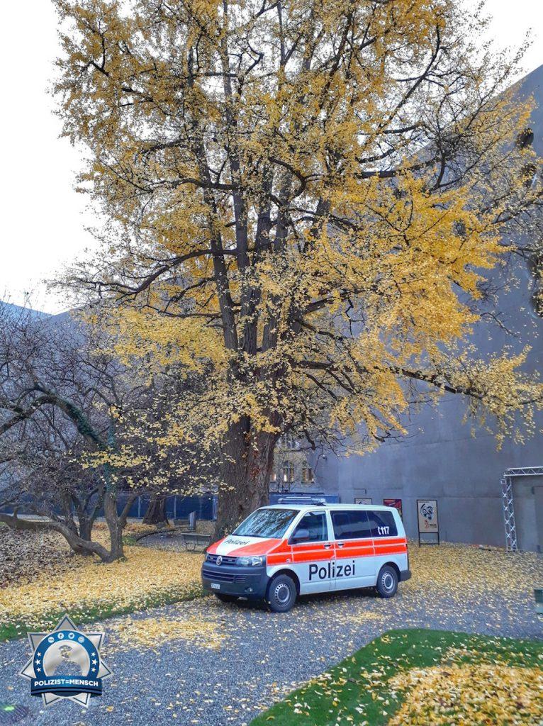 """""""So schön, mitten in der Stadt! Herbstliche Grüsse aus Zürich, Madlaina"""""""
