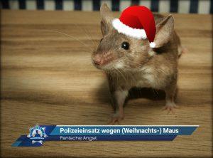 Panische Angst: Polizeieinsatz wegen (Weihnachts-) Maus