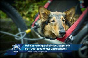 Kuriose Verfolgungsfahrt: Polizist verfolgt pöbelnden Jogger mit dem Dog-Scooter der Geschädigten