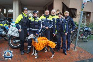 Danke für die Begleitung des vierten Kölner Galgo-Marsches