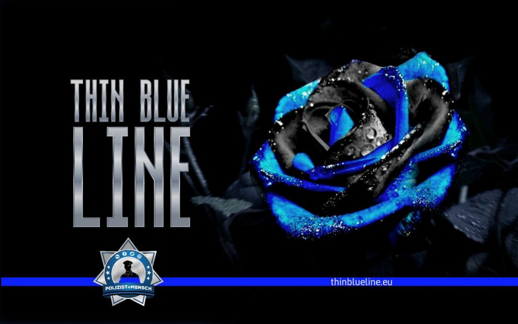 Thin Blue Line Rose