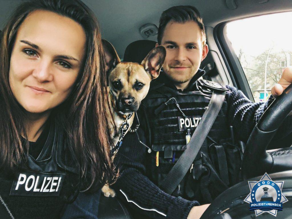 Nicht jeder Fundhund kann Polizeihund werden, wir kümmern uns aber um jeden einzelnen