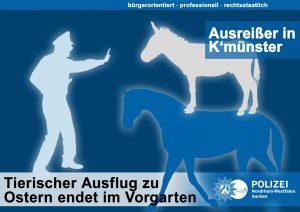 Tierischer Nachklatsch zu Ostern: Verfolgung mit Linienbus aufgenommen
