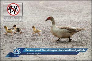 Tätlicher Angriff: Passant passt Tierrettung nicht und wird handgreiflich