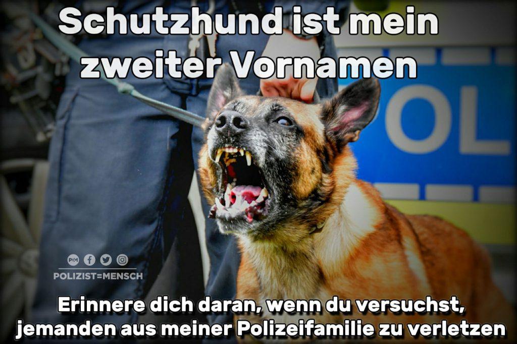 Warum der Schutzhund Schutzhund heißt...