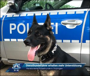 Pensionierte Polizeihunde in Thüringen: Diensthundeführer erhalten mehr Unterstützung