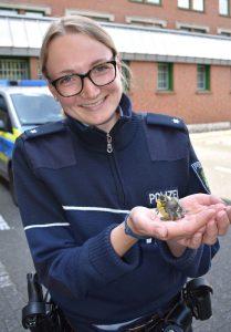 Auf dem Weg zum Dienst: Jungvogel auf der Straße gefunden