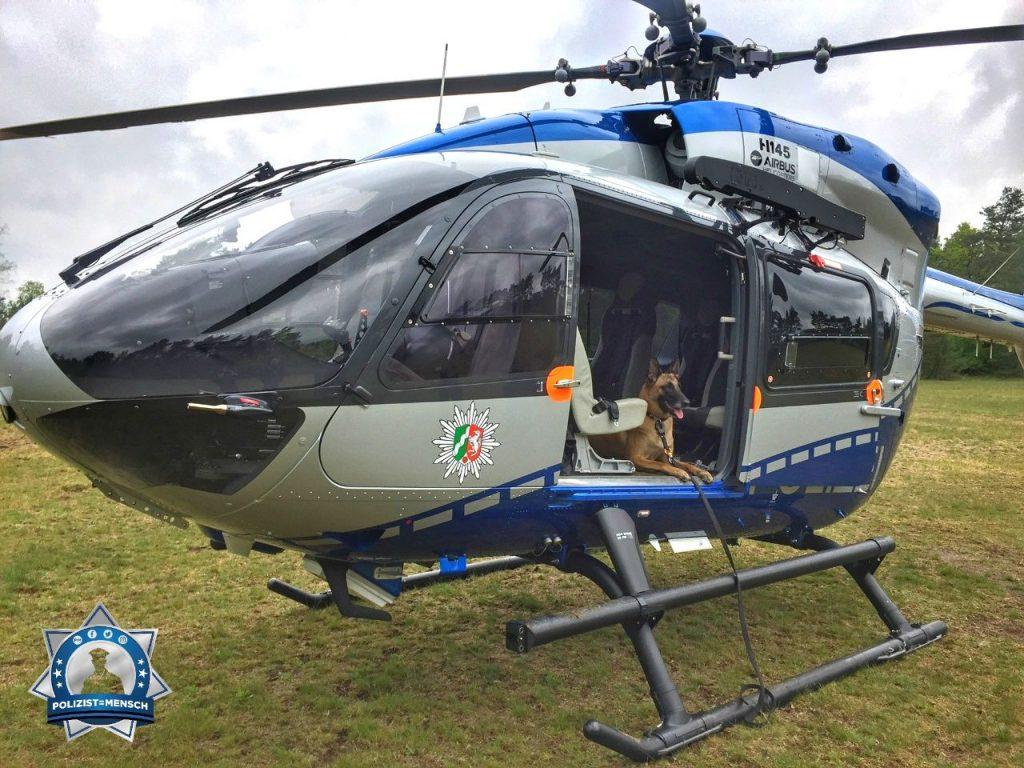 Diensthund trainiert im Polizeihubschrauber