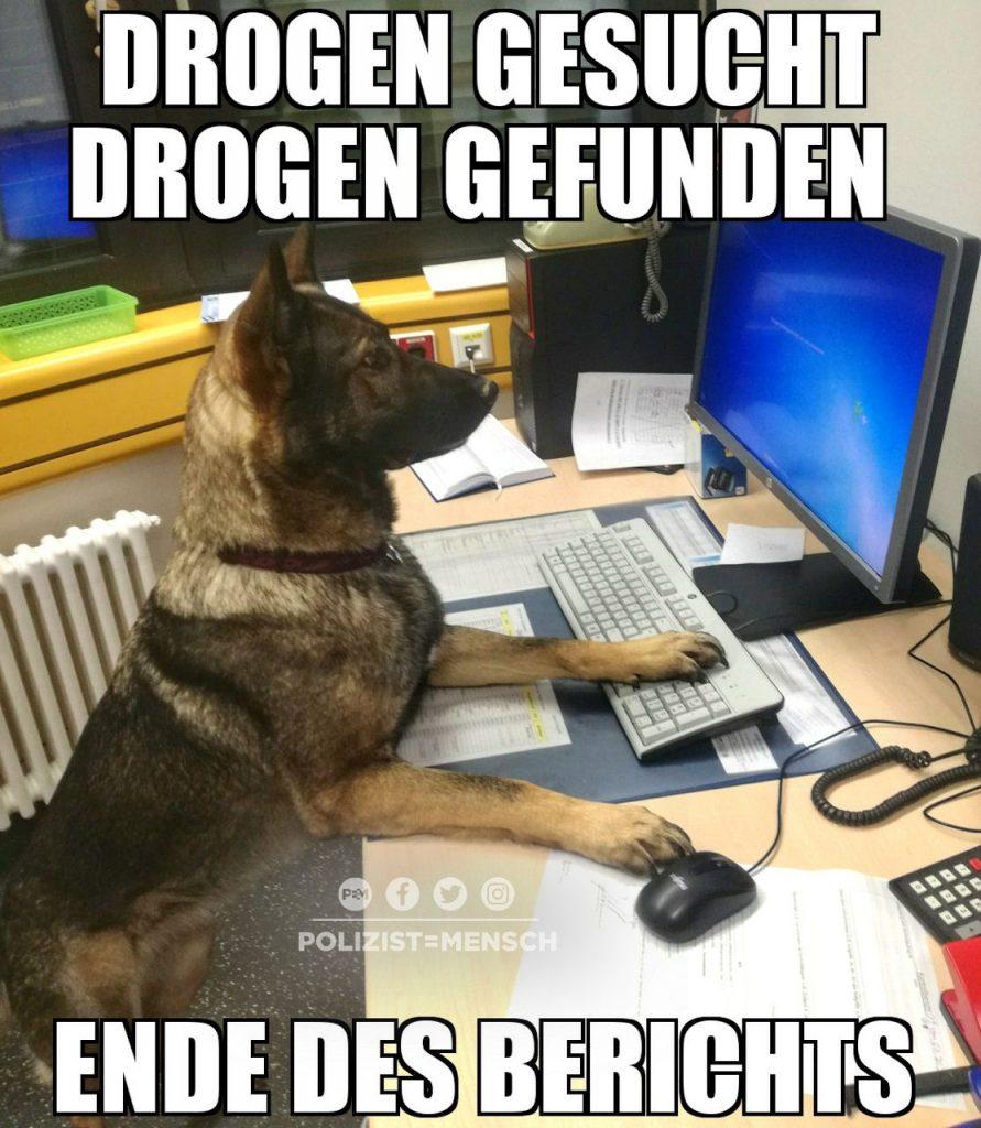 Auch die Diensthunde des Zoll müssen ihren Papierkram erledigen 