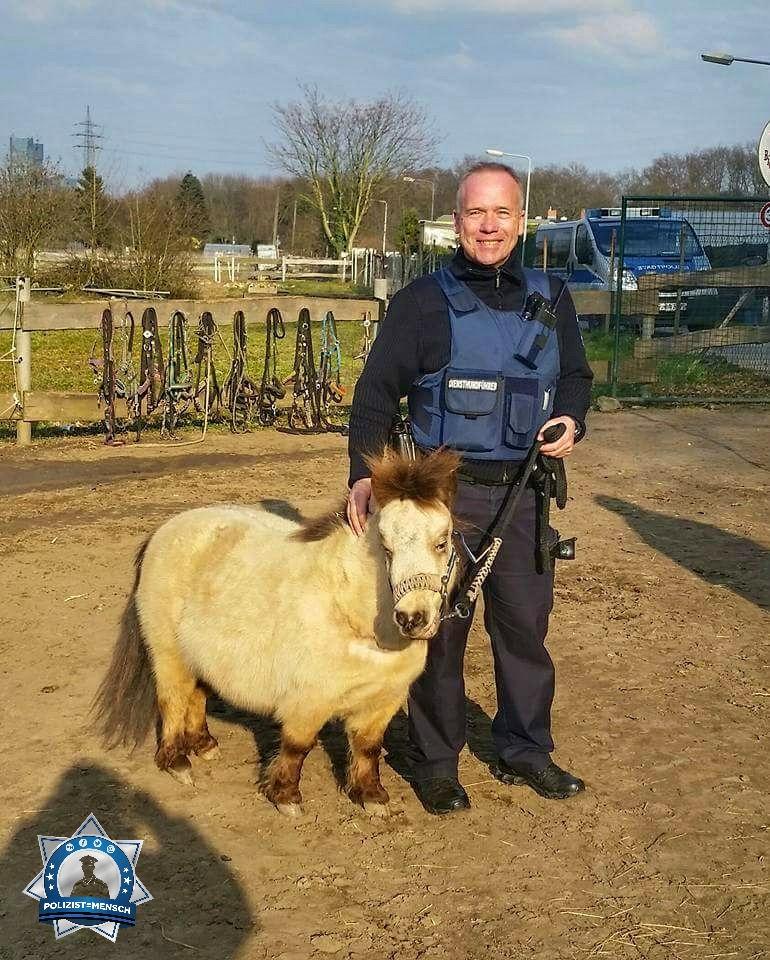 """""""Darf ich vorstellen, unser neuer Diensthund  Gruß aus Frankfurt am Main, Michael"""""""