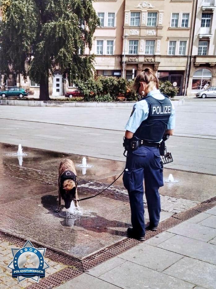 """""""Flüssige Versorgung unter Ausnutzung der baulichen Gegebenheiten... Erfrischte Grüße von Diensthündin Freya von der Bundespolizei!"""""""