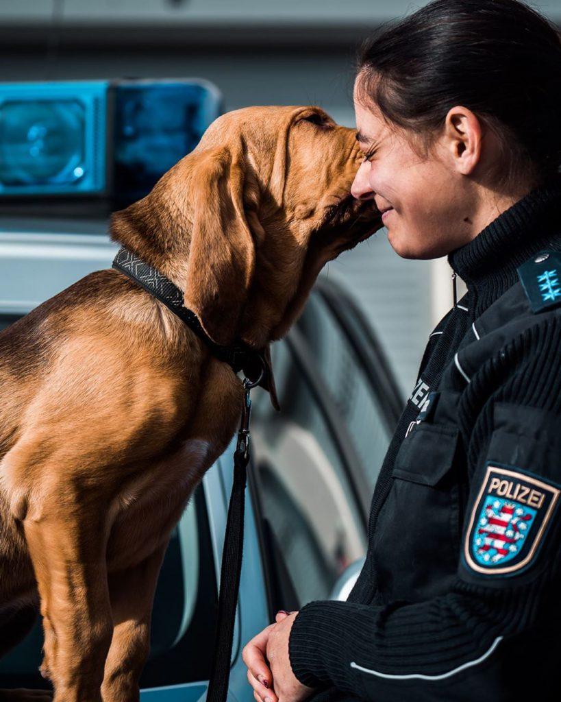 Internationaler Hundetag: Beste Freunde, nicht nur im Dienst.