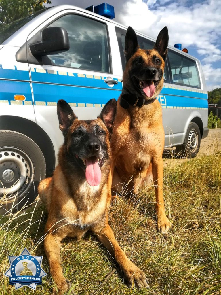 Diensthund Grimm und Hundeführerin Hannah auf Fortbildung