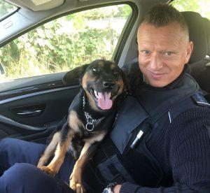 Wenn der Hund alleine Gassi geht: Bundespolizisten verhindern schlimmeres und bringen ihn nach Hause