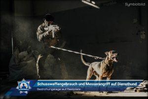 Bedrohungslage auf Rastplatz: Schusswaffengebrauch und Messerangriff auf Diensthund