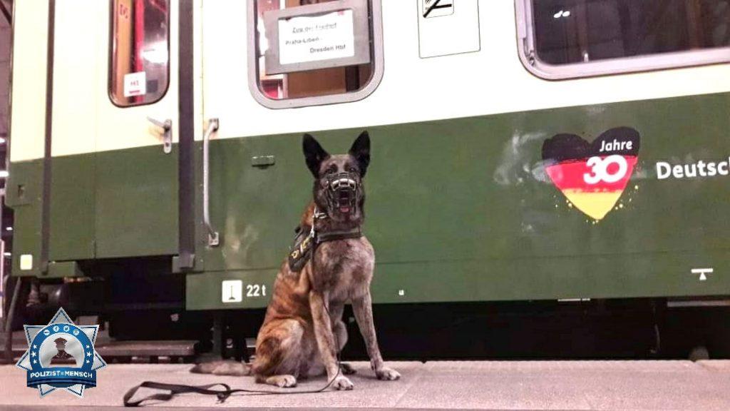 """""""Sonderzug (rekonstruierter Originalzug von 1989) von Dresden nach Prag und zurück... Wachsame Grüße von Freya, Diensthündin der Bundespolizei"""""""
