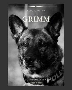 Wir trauern: Diensthund Grimm plötzlich im Dienst verstorben