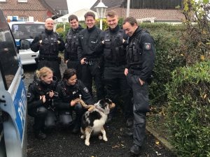 Stromschlag am Weidezaun: Polizisten bringen ausgebüxten Hund zurück