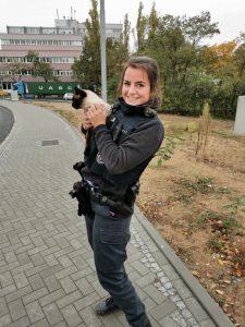 Helfer in der Not: Polizisten retten verängstigte Katze