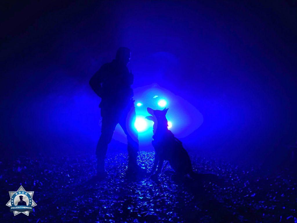 """""""In einer ruhigen Minute im Nachtdienst den Moment mit seinem vierbeinigen Partner geniessen. Gruss von der Stadtpolizei Zürich, Diensthunde-Kompetenz-Zentrum, von Marco mit Hank vom Ruinenblick!"""""""