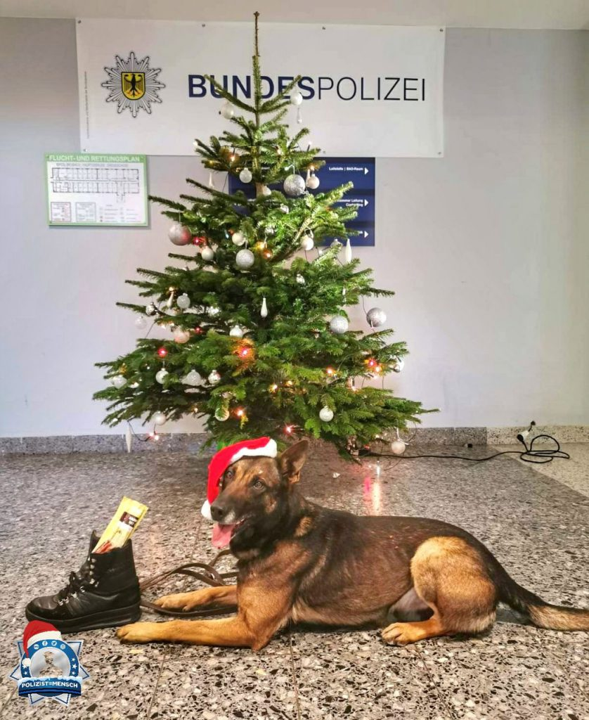 """""""Diensthund Uzzo wünscht Häppie Nikolausi 🎅 und ein schönes zweites Adventswochenende."""""""