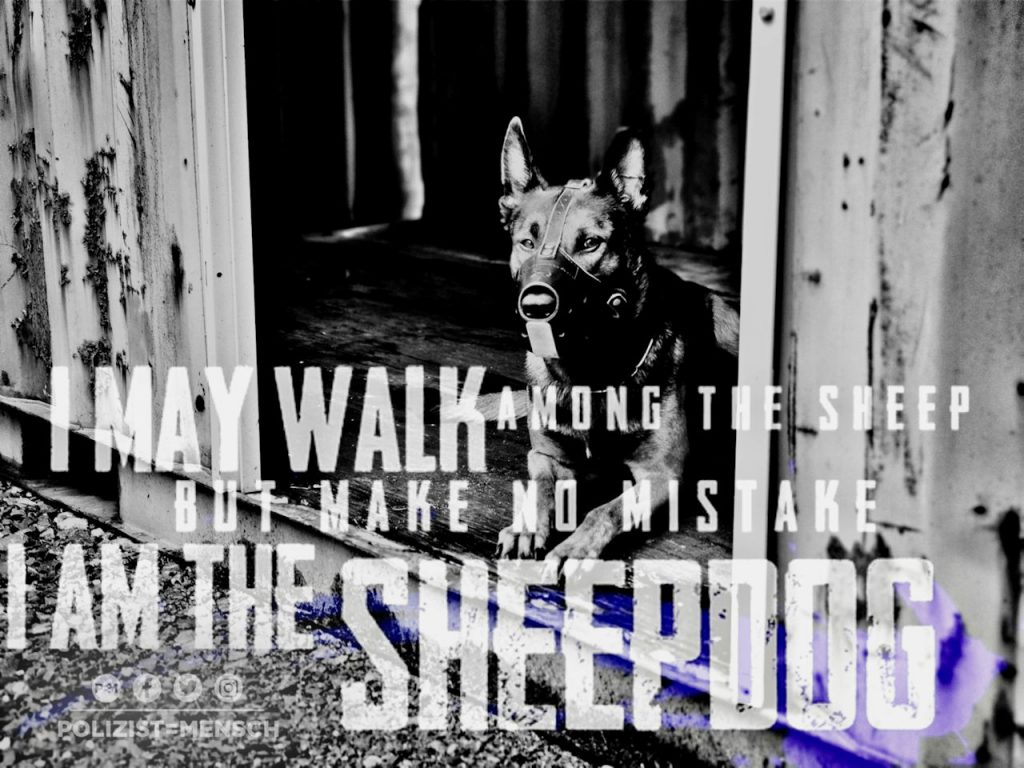 I am the sheepdog