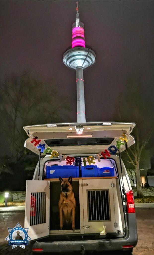 """""""Happy Birthday mein treuer Freund und Kollege 🐾 !!! Viele Grüße vom Nachtdienst aus Frankfurt und allen einen tollen Rosenmontag, wünschen Diensthund Jim und Diensthundeführerin Jenny (BPol)"""""""