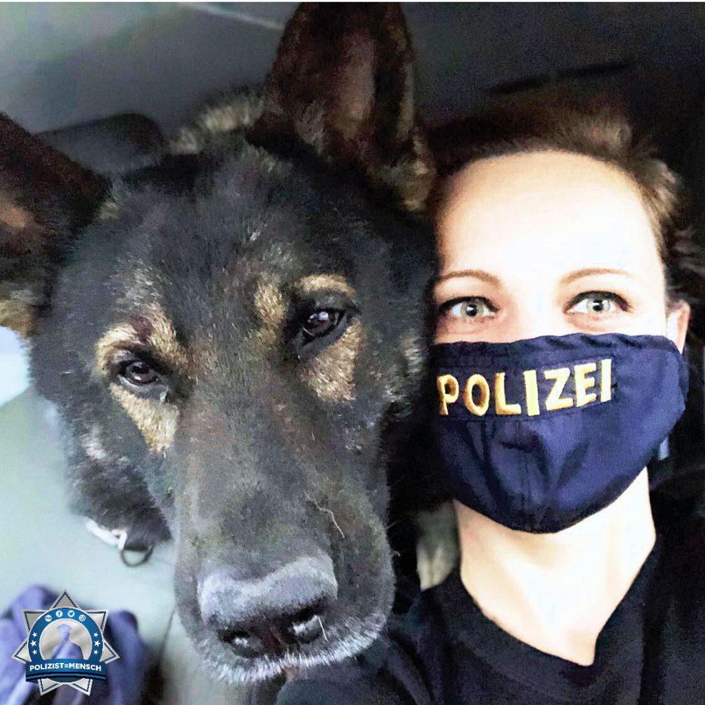 """""""So nutzt auch die Hundeführerin mal die feschen Hemden 🙈 Viele Grüße von Sonja und Diensthund"""""""