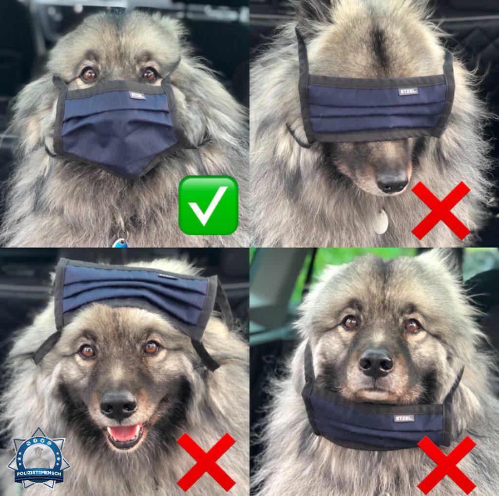 Wie man den Mundschutz richtig anlegt, zeigt euch Maddox